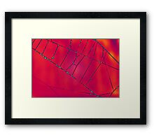 w.lattice Framed Print