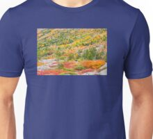 Fall coloor on Cadillac Mountain, Acadia National Park, Maine Unisex T-Shirt