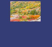 Fall coloor on Cadillac Mountain, Acadia National Park, Maine Unisex T-Shirt