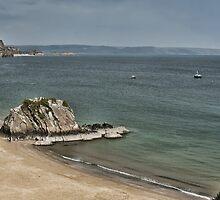 Goscar Rock North Beach Tenby Pembrokeshire by Steve Purnell