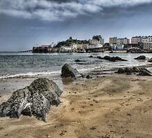 Tenby Harbour North Beach View 2 by Steve Purnell