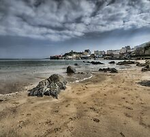 Tenby Harbour North Beach View 3 by Steve Purnell