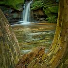 Lower Somersby Falls, NSW by Laura  Knight
