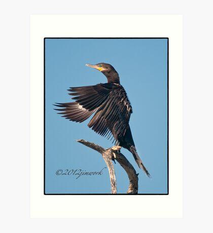 Neotropic Cormorant Yoga Art Print
