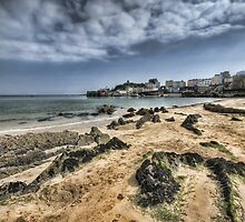 Tenby Harbour North Beach View 4 by Steve Purnell