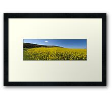 A Crop of Sunshine Framed Print