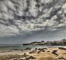 Tenby Harbour North Beach View 5 by Steve Purnell