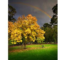 Coburg Lake Reserve Photographic Print