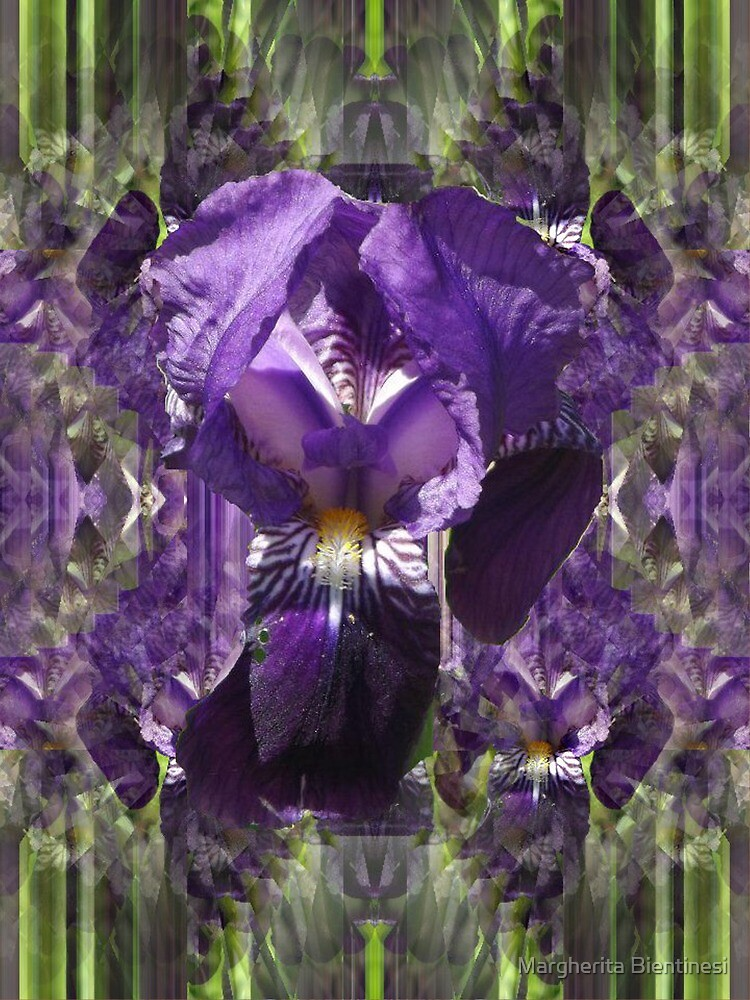 Blue Iris by Margherita Bientinesi
