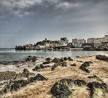 Tenby Harbour North Beach View 7 by Steve Purnell
