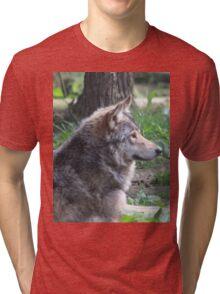 Lone Wolf Tri-blend T-Shirt