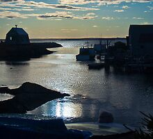 Setting Sun - Blue Rocks, Nova Scotia, Canada by Darlene Ruhs