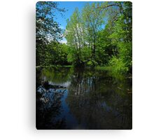 Happy Earth Day 2012...Revelation (Mother Earth)  Canvas Print