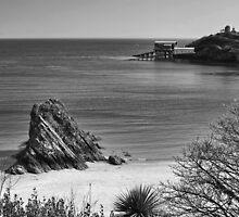 Goscar Rock North Beach Tenby Mono by Steve Purnell