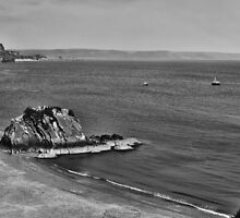 Goscar Rock North Beach Tenby Pembrokeshire Mono by Steve Purnell