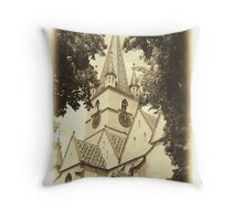 it's part of our history Throw Pillow
