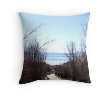 Board Walk to Mono Lake Throw Pillow