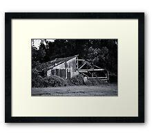 Tree Growing Through a Barn Framed Print