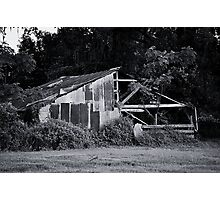 Tree Growing Through a Barn Photographic Print