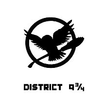 District 9 3/4 by elzabth12