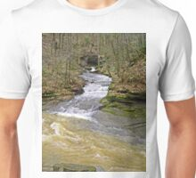 Grab The Bulls Unisex T-Shirt