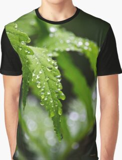 Fern Leaves Graphic T-Shirt