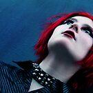 Antares Silverfox by Lividly Vivid
