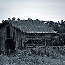 Big Old Barn by joevoz