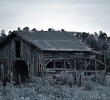 Big Old Barn by joevoz