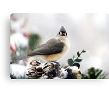 Titmouse in the Snow Canvas Print