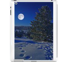 Moonlight night iPad Case/Skin