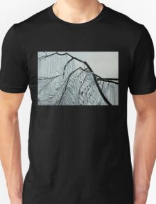 Intricate Ice Curtains Unisex T-Shirt