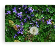 In My Front Yard Canvas Print