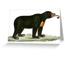 Brown Bear with long curly tongue Vintage Illustration Greeting Card