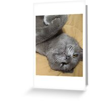 I Can See Straight Up Your Nose From Here! Greeting Card