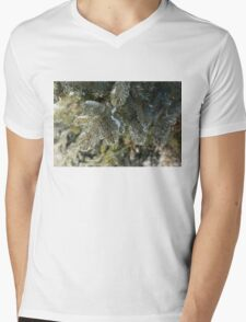 Mother Nature's Christmas Decorations - Pine Branches Mens V-Neck T-Shirt