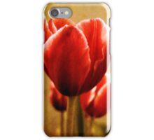Antique Tulips iPhone Case/Skin