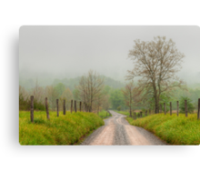 Sparks Lane - Cades Cove Canvas Print