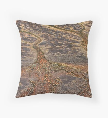 Desert Gold Throw Pillow