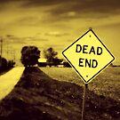 Dead End by Brian Gaynor