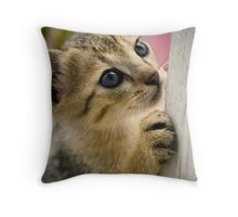 Playing Kitty Throw Pillow