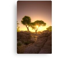 Shading Sunset Canvas Print