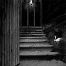 Between Heaven & Hell (Part 1) by Raymond Kerr