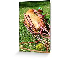 Peeking Duck Greeting Card