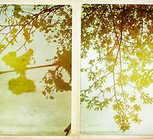 Cambridge Collection: Spring Leaves by Sybille Sterk