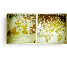 Cambridge Collection: Spring Leaves Canvas Print