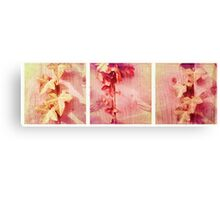 Cambridge Collection: Pink Ivy Canvas Print