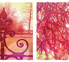 Cambridge Collection: Pink Park by Sybille Sterk