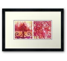 Cambridge Collection: Pink Park Framed Print