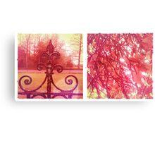 Cambridge Collection: Pink Park Canvas Print